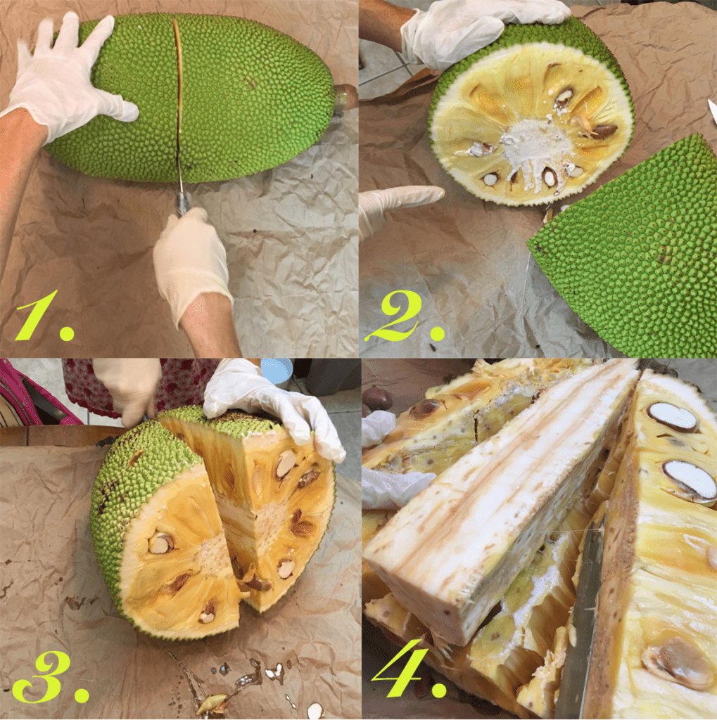 Steps to opening a jackfruit. Vying for Veganism.
